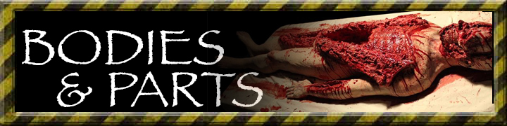 banner for bodies